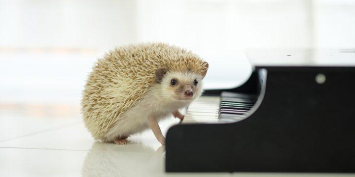 ピアノ教室でクレーマーやモンスターペアレントを生徒募集しない方法